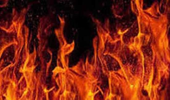 BREAKING NEWS: पीरागढ़ी आग: 14 घायल, बचाव अभियान जारी